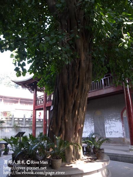 南華禪寺 15-1