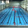 北區運動中心泳泳池.jpg