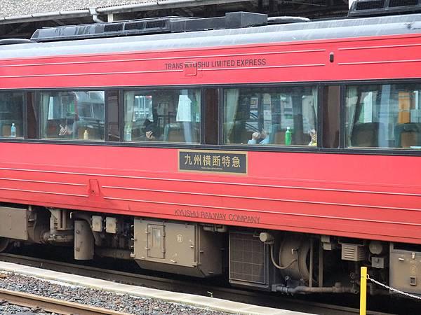 DSCF2919.JPG