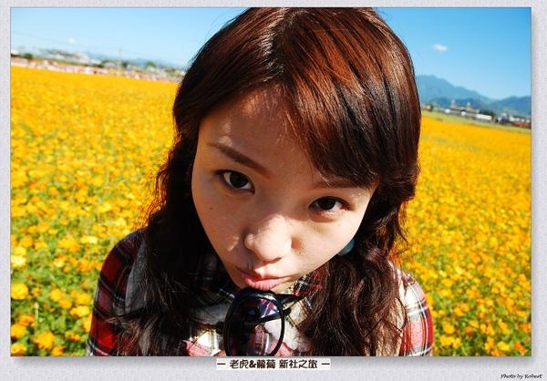 DSC_6508.jpg