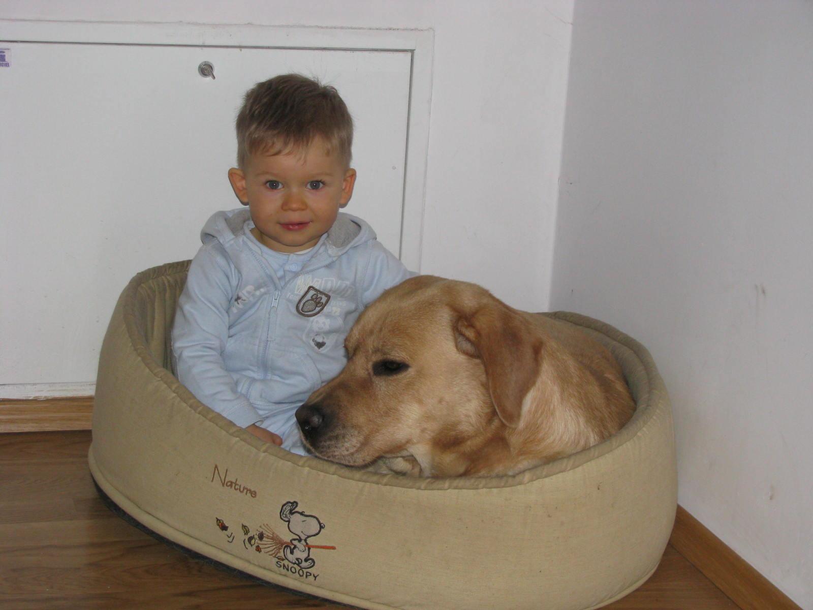Kid&Dog2