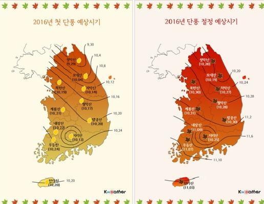 2016韓國楓葉預測