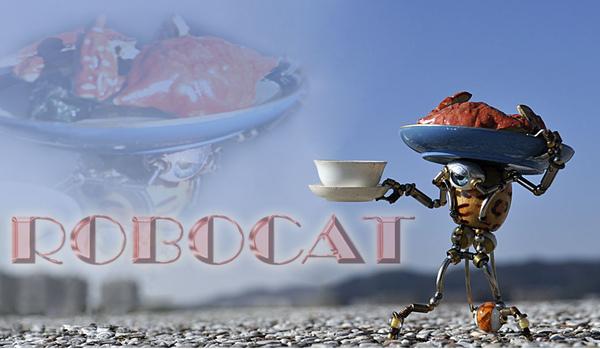 螃蟹 02.jpg