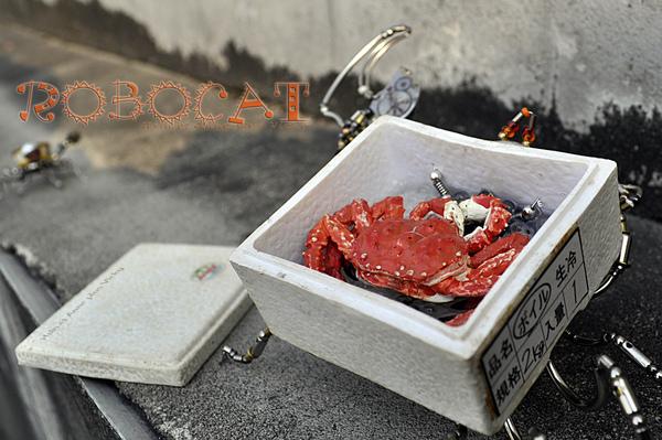 螃蟹快遞 B.jpg