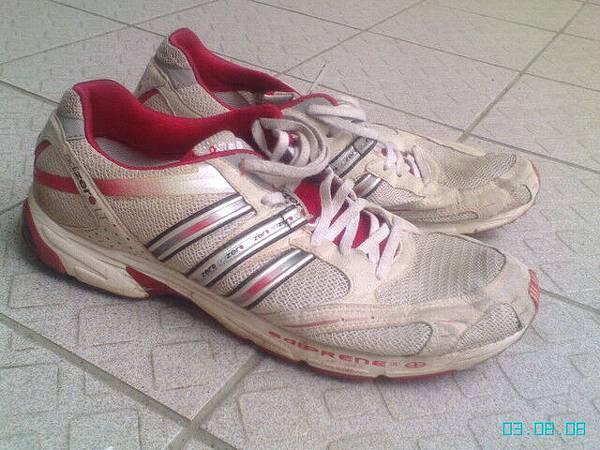 被我磨到不成樣的愛迪達戰鞋