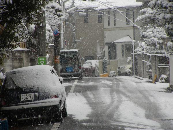 東京雪.jpg