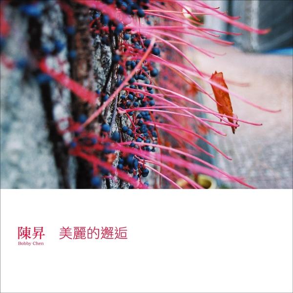 陳昇-美麗的邂逅封面圖.jpg