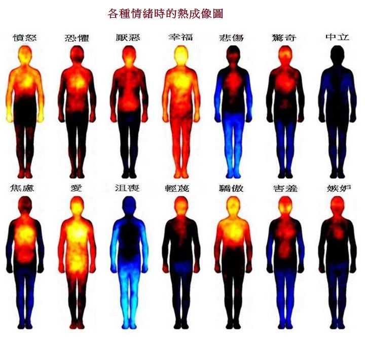 各種情緒時的熱成像圖