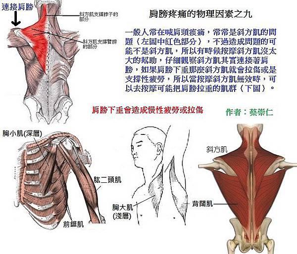 肩膀疼痛的物理因素之九