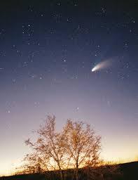 彗星 圖片資料來源 維基百科