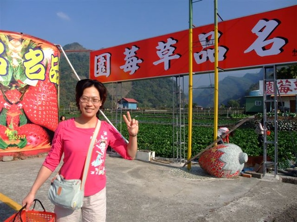名品草莓園 (2).JPG