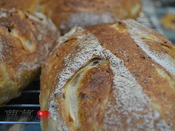 2013-11-01雙洋蔥麵包_001