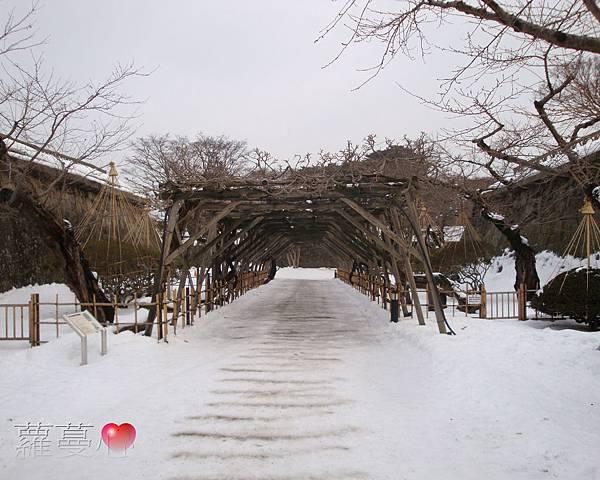 2014-1-23~27北海道旅行_063.jpg