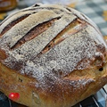 2014-04-16葡萄菌種全麥葡萄乾麵包_003.jpg