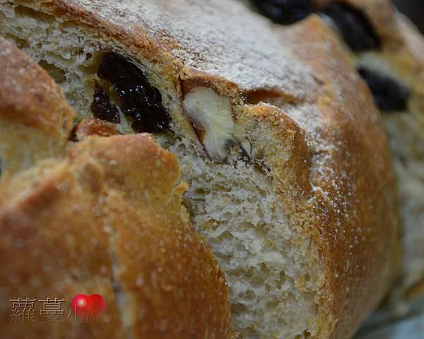 2014-04-16葡萄菌種全麥葡萄乾麵包_015.jpg