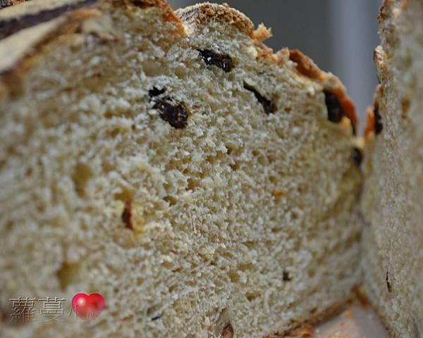 2014-04-16葡萄菌種全麥葡萄乾麵包_020.jpg