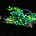 DSC_ 2012-2-10 下午 07-49-48.jpg