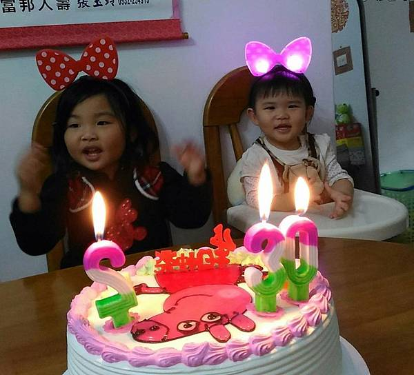 20170102 (28)溜媽和咩同慶生日.jpg