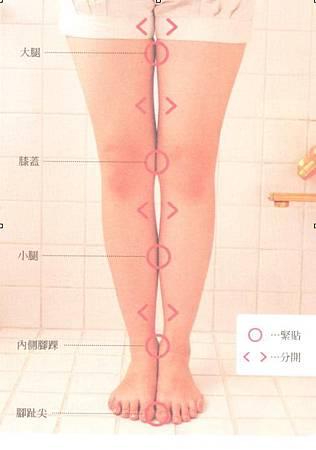 腿1.jpg