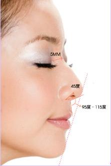 鼻標準.bmp