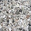 一整片的珊瑚海岸