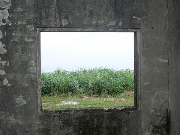 金瓜石-勸濟堂停車場附近廢墟