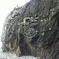 石頭上有個天然的 3