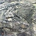 石頭上有個天然的2