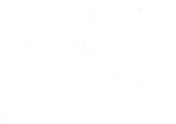 ./馬英九/匿名捐政/匿名捐贈.pdf-021