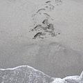 海水沖過的地方,腳印就不見了