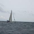 海中的帆船