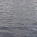 海水超平穩的,一點浪花都沒有