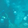 也有人在五六公尺深的水下面潛水