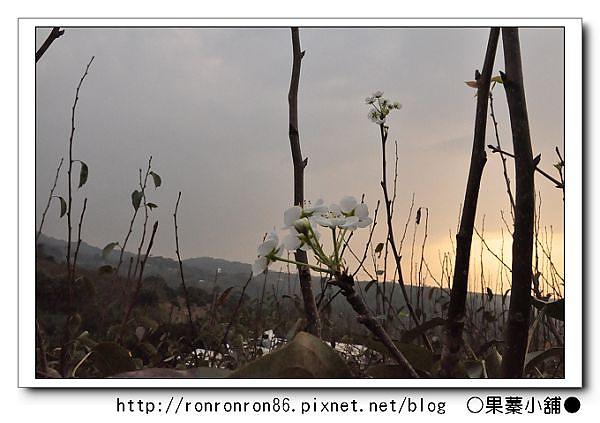 照片 218-1.jpg