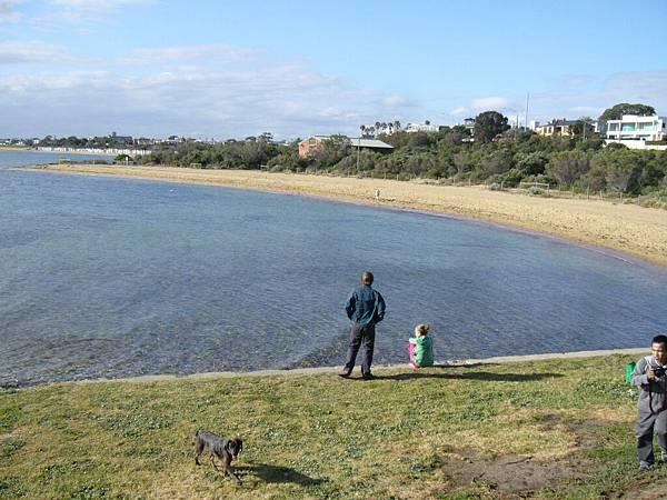 brighton海岸水超乾淨.jpg