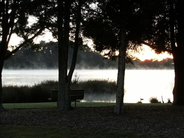 清晨的湖邊總是充滿著冷僻的霧氣.JPG