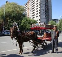 北疆 馬車.jpg