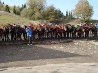北疆騎馬.jpg