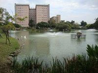 中興湖8.jpg