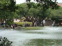 中興湖9.jpg