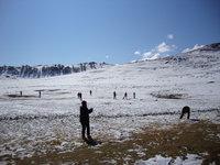 北疆大雪16.jpg