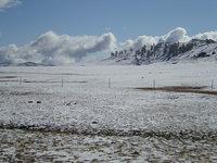 北疆大雪15.jpg