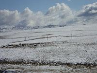 北疆大雪18.jpg