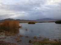 北疆風光4.jpg