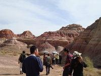 北疆風光8.jpg