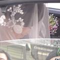 A新娘嬌羞的樣子.jpg