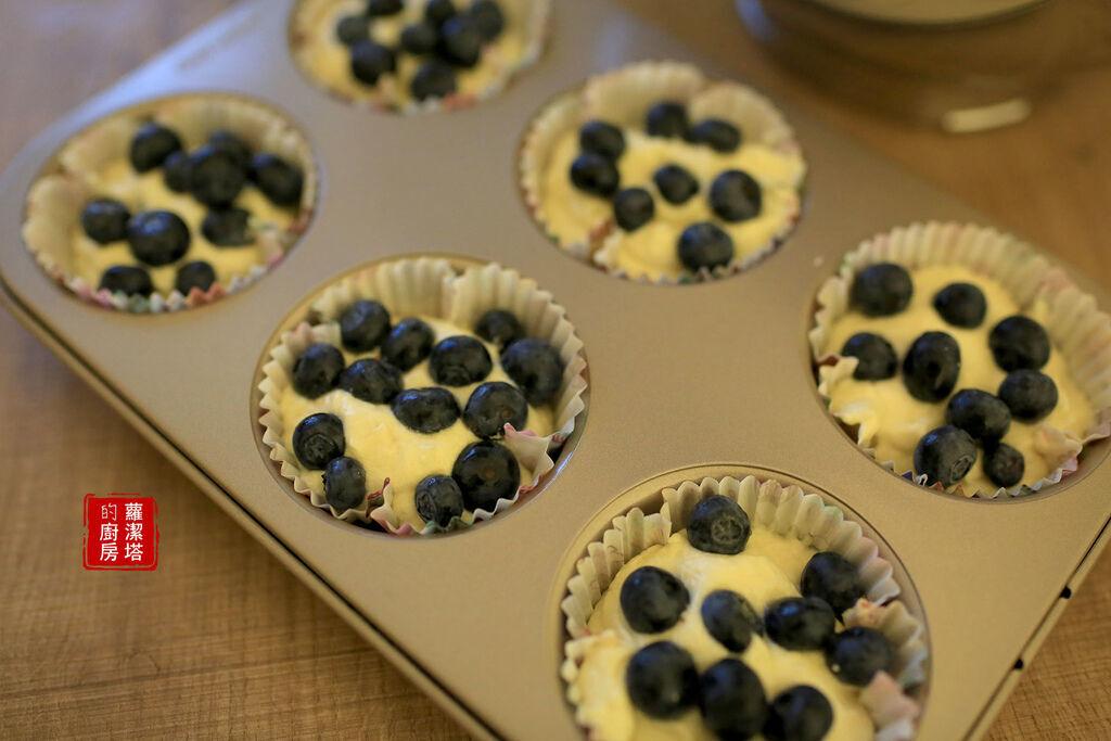 藍莓01.jpg