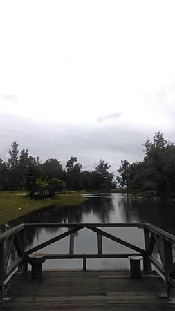 IMAG7523