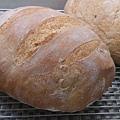 1544919583068f-蕃茄羅勒麵包.jpg