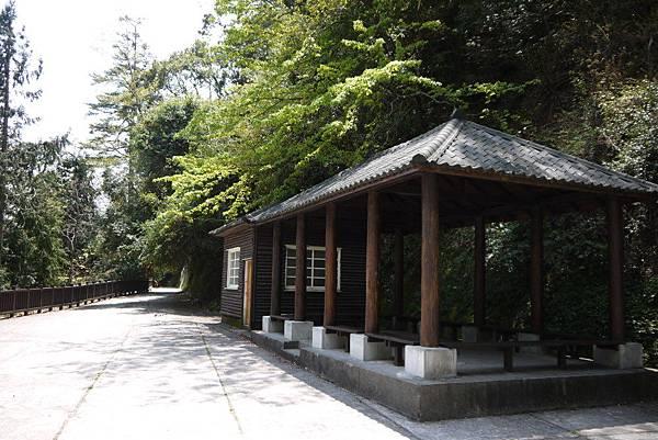 1060410武陵紫藤(45).JPG